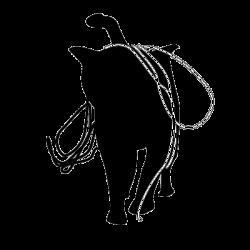 sticker animal - Sticker chat pelote