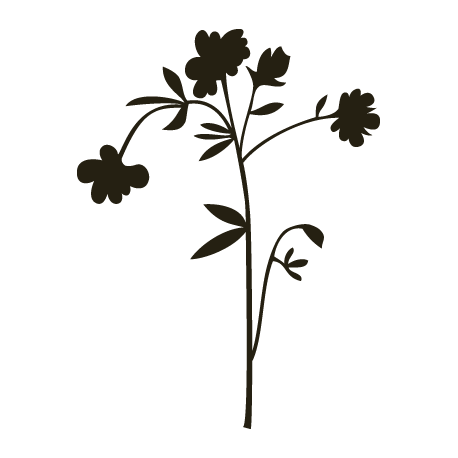 Sticker fleur - Kit d'co