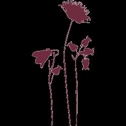 Sticker fleur champêtre