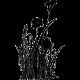 stickers fleurs des champs