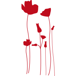 Stickers fleurs - stickers coquelicots