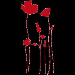 Sticker fleurs - sticker coquelicots