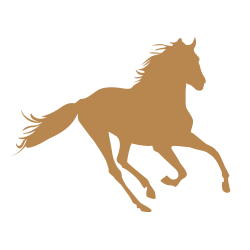 Sticker cheval 1