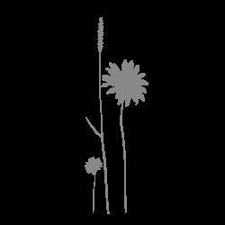 Stickers fleurs - Composition florale