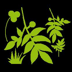 Stickers fleurs - un coin de nature