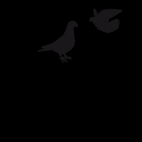 Stickers oiseaux - Sur la branche