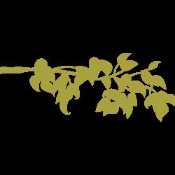 Sticker branche et feuilles - 1