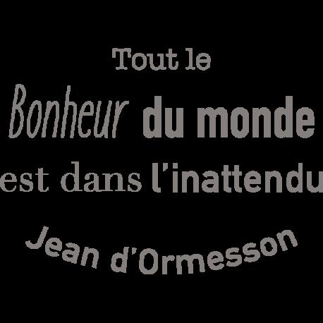 Stickers De Phrases Célèbre Pour Décorer La Maison Citation D Ormesson