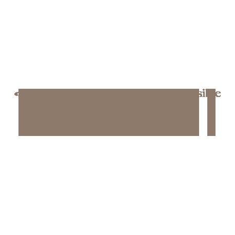 Sticker citation de Mark Twain